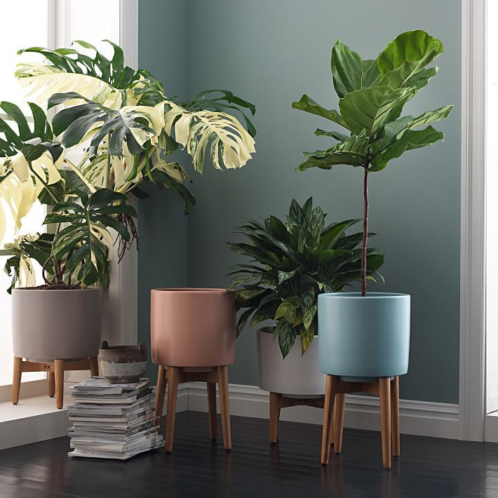 6 Modern Planters That Will Breathe Life Into Your Home