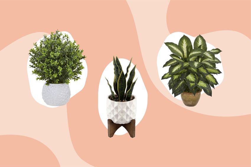 Best Places to Buy Fake Plants