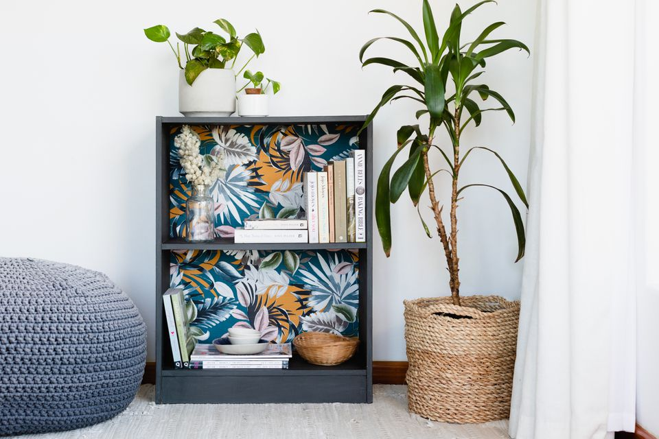 Small black bookcase updated with blue and orange wallpaper in back next to houseplants and books
