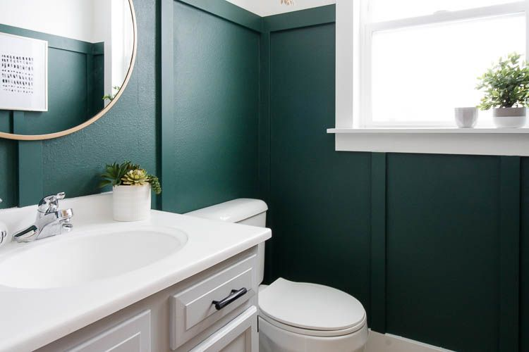 bathroom with dark green paint and a couple small plants