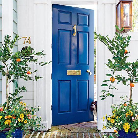 puerta azul audaz
