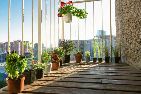 Balcony with outdoor plants in pots sitting along a white railing
