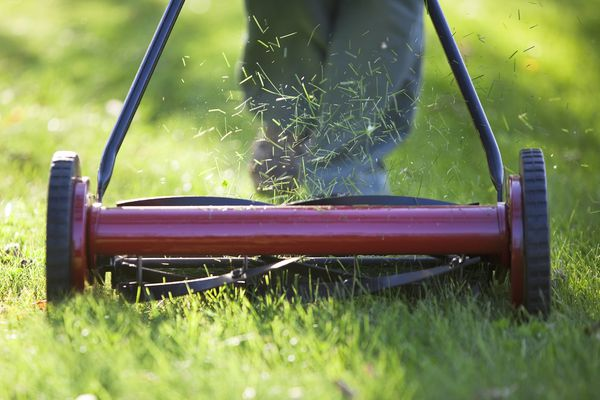 Reel lawn mower
