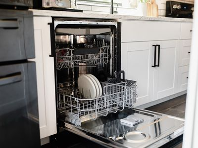 Dishwasher door open with dishes in dish rack