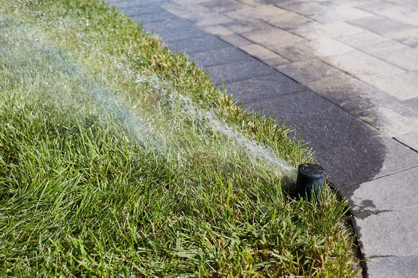 Sprinkler with stop-and-waste valve spraying water on lawn next to cement blocks