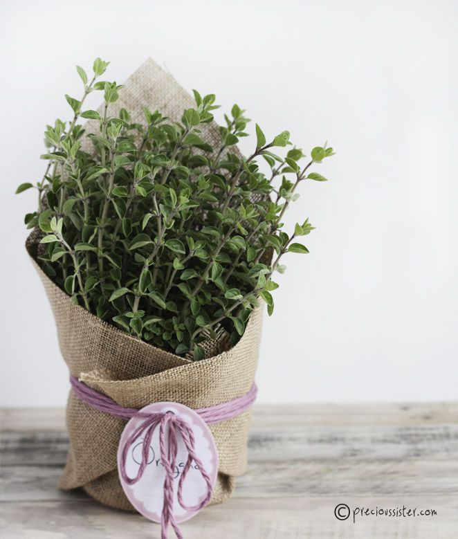 Creative hostess gifts that you can diy diy herb planter solutioingenieria Images