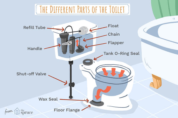 parts of the toilet illustration