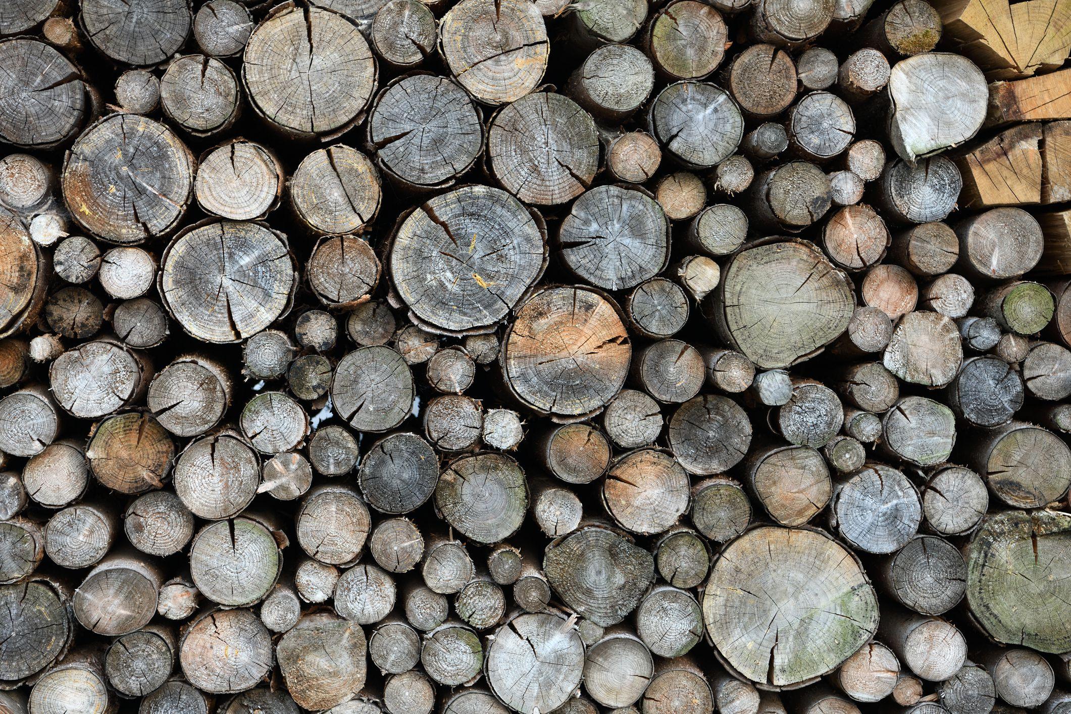Birch Maple Apple Chiminea Wood