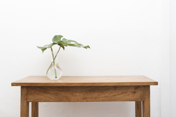 Monstera leaf in vase on sofa table against wall