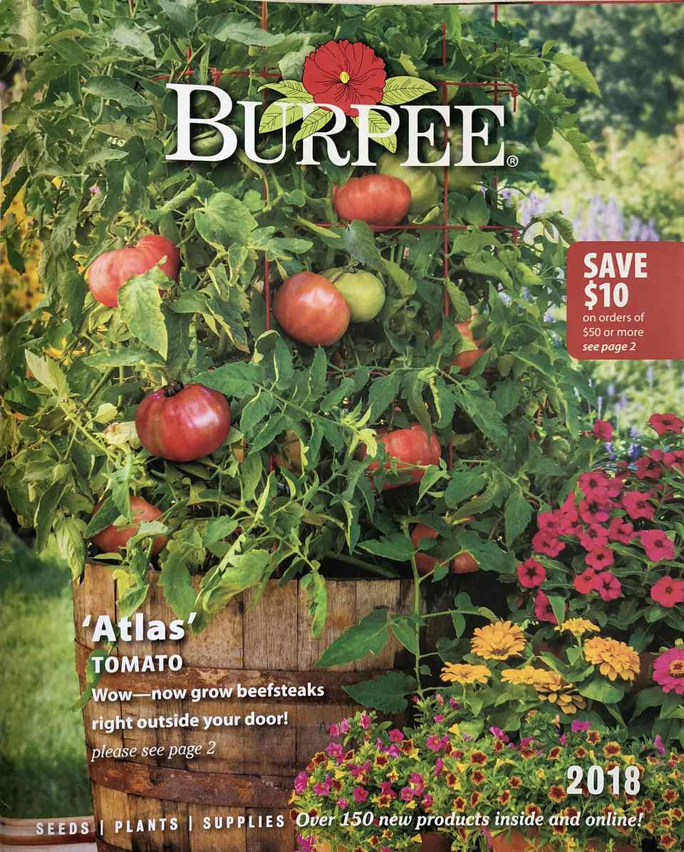 Cover of the 2018 Burpee seed catalog