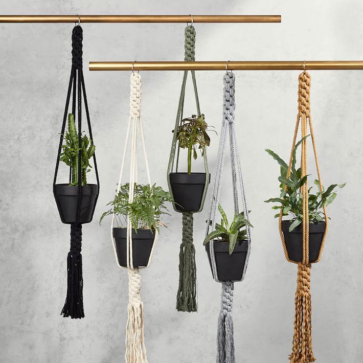 Yerbamala Designs Filament Plant Hanger