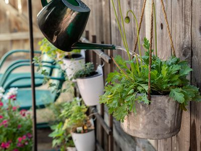 Black watering can pouring water deeply into hanging plant with cement hanger