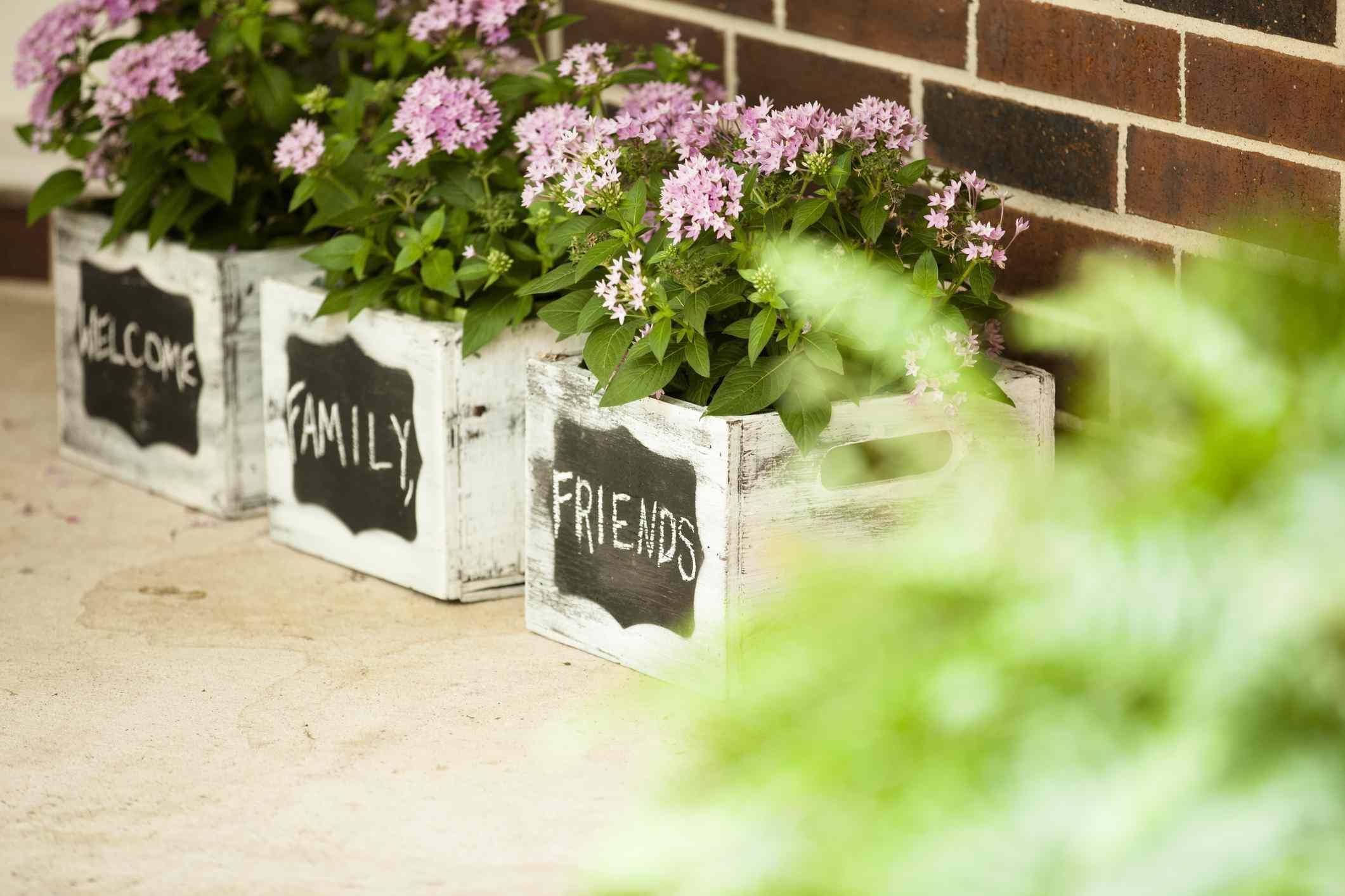 Primavera, jardineras de verano en el porche de la casa