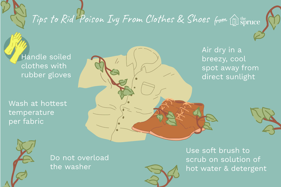 How To Get Rid Of Poison Ivy On Clothes And Shoes