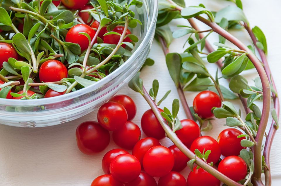 Purslane weed mixed with tomatoes to make salad.