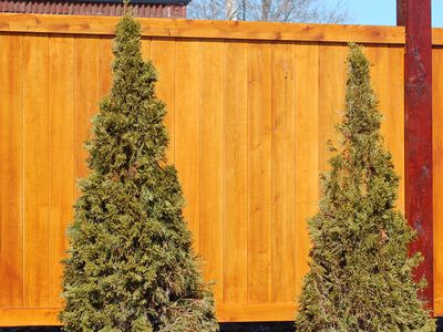 What Kind of Lumber Do I Need for Wood Fencing?