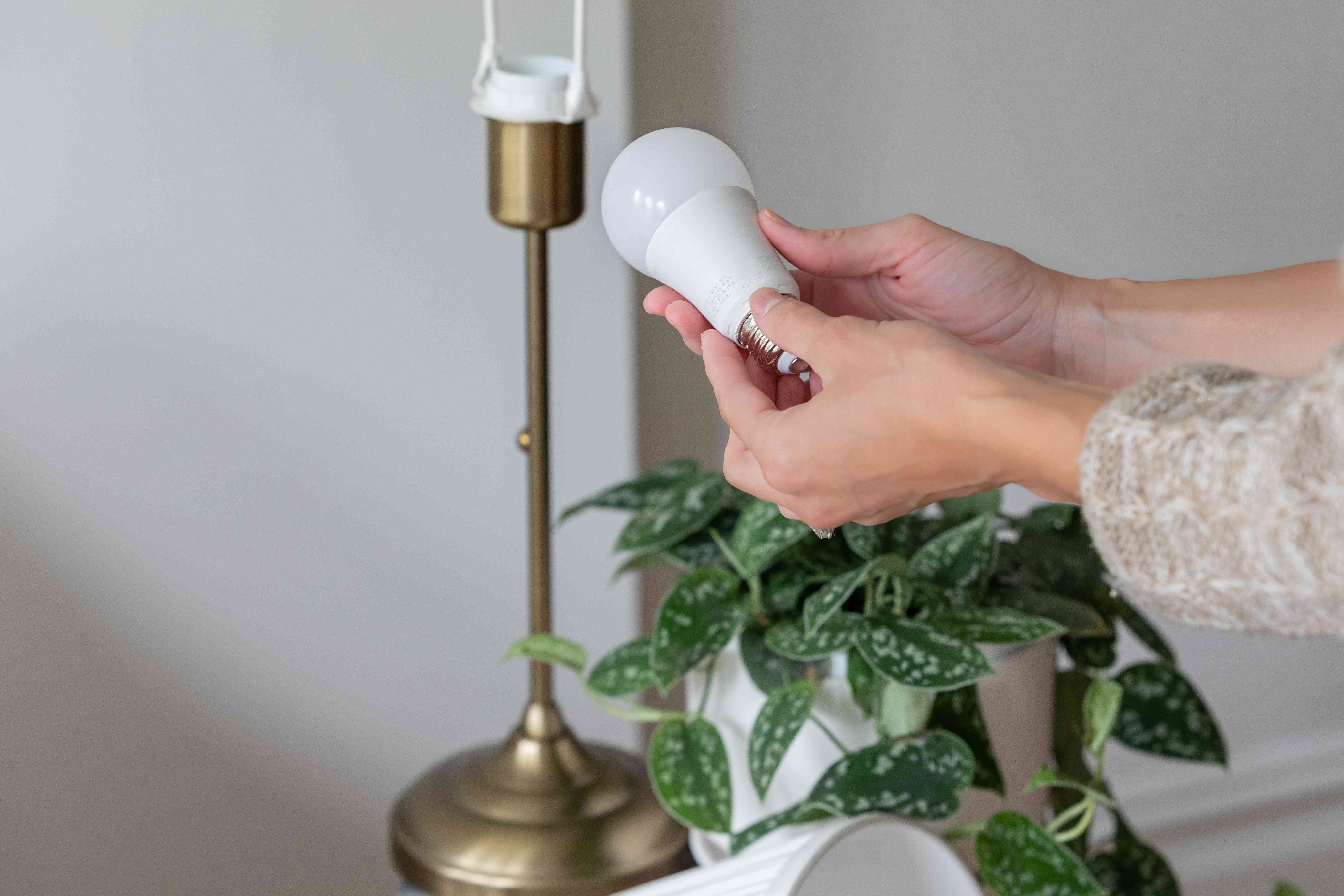 Inspecting a table lamp