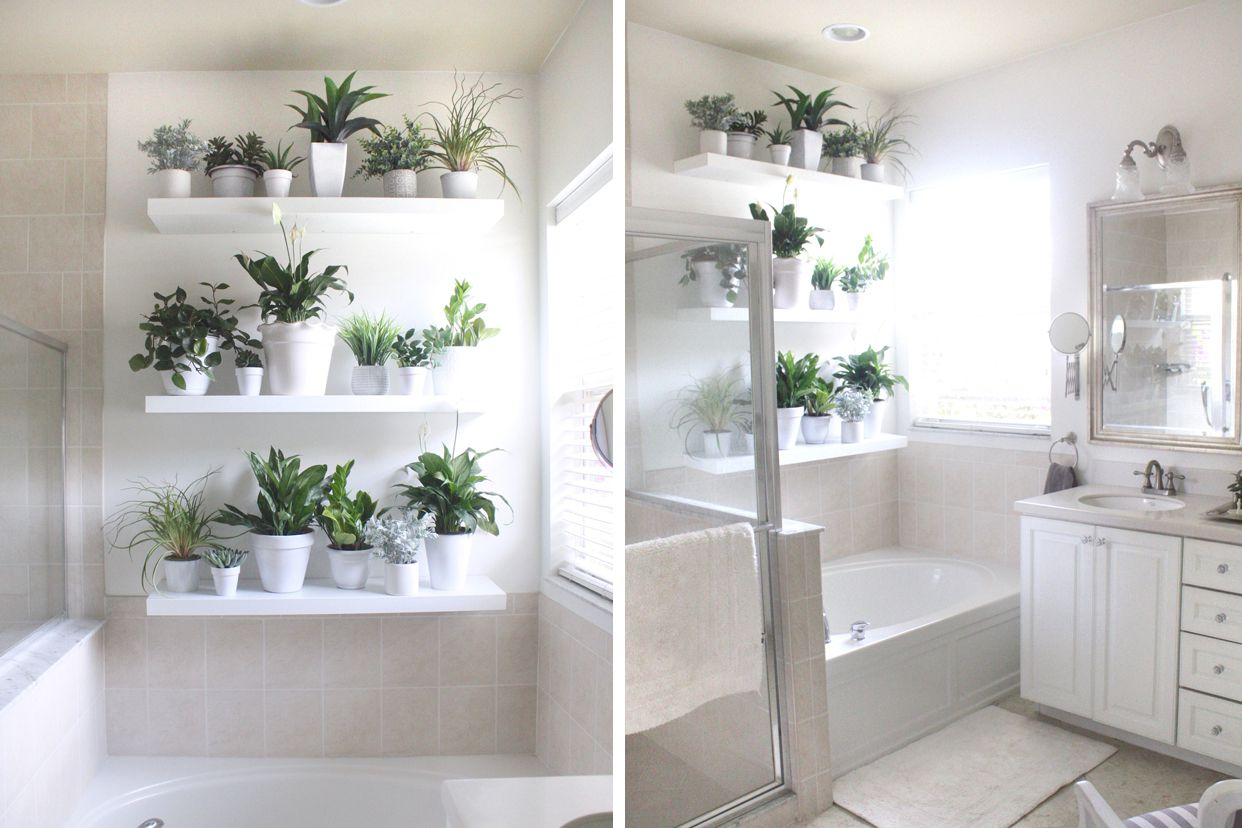 mix of fake and living plants in a bathroom