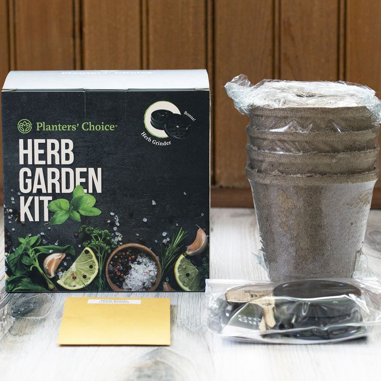 Planters' Choice Organic Herb Growing Kit