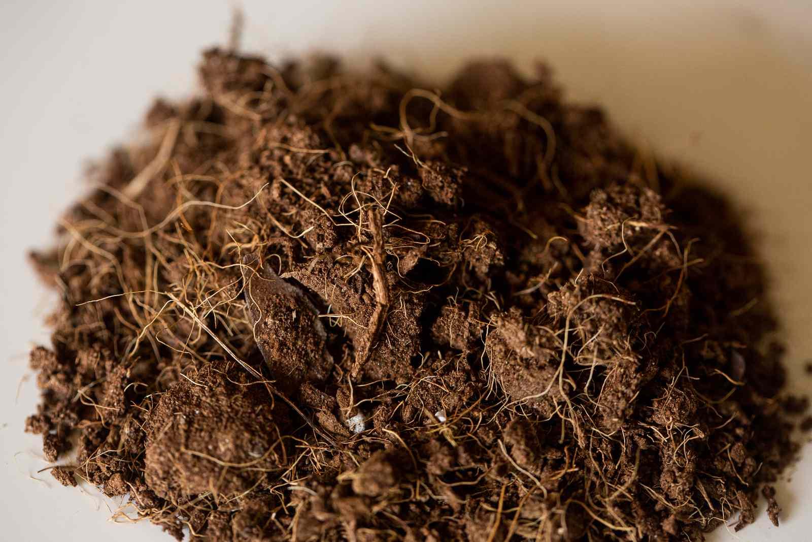 Pile of coconut coir fibers for soilless potting mix closeup