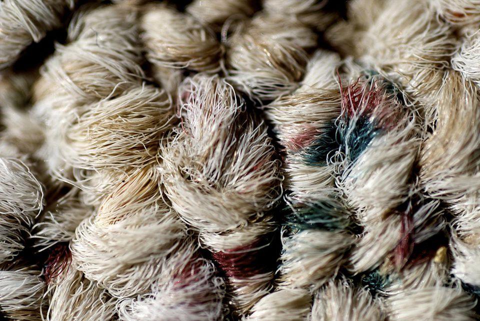 Wool rug fibers