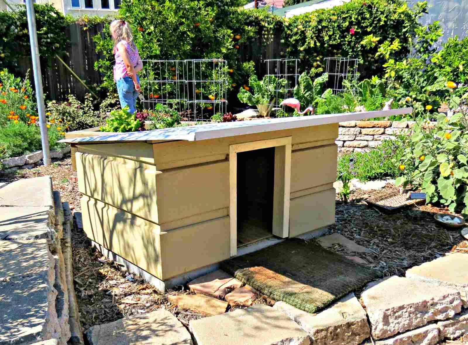 Dog house shed