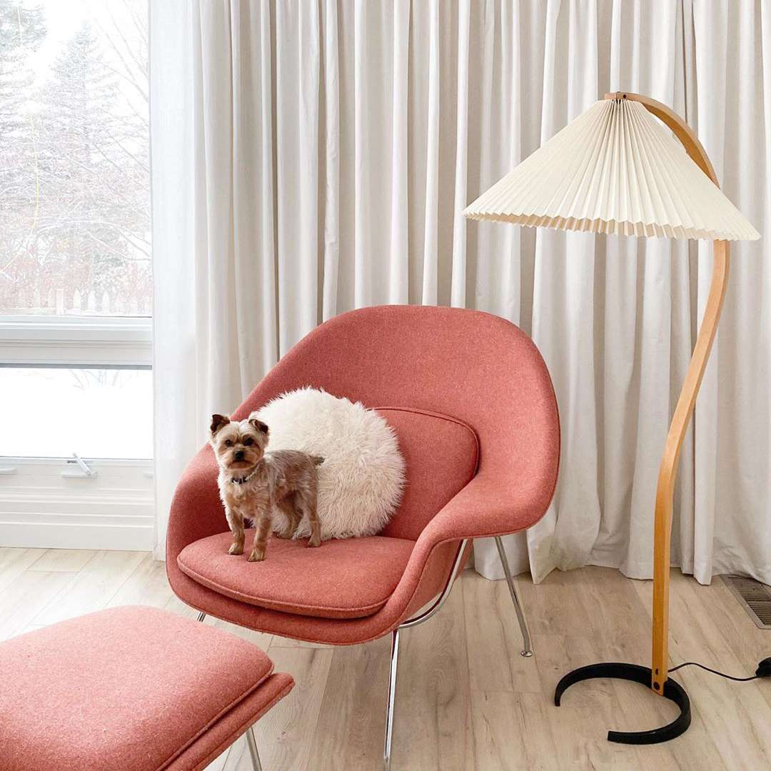 Living room with pink chair