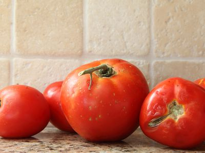 Fruit flies on tomatoes in kitchen