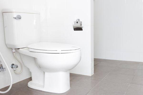 Plain toilet in bathroom