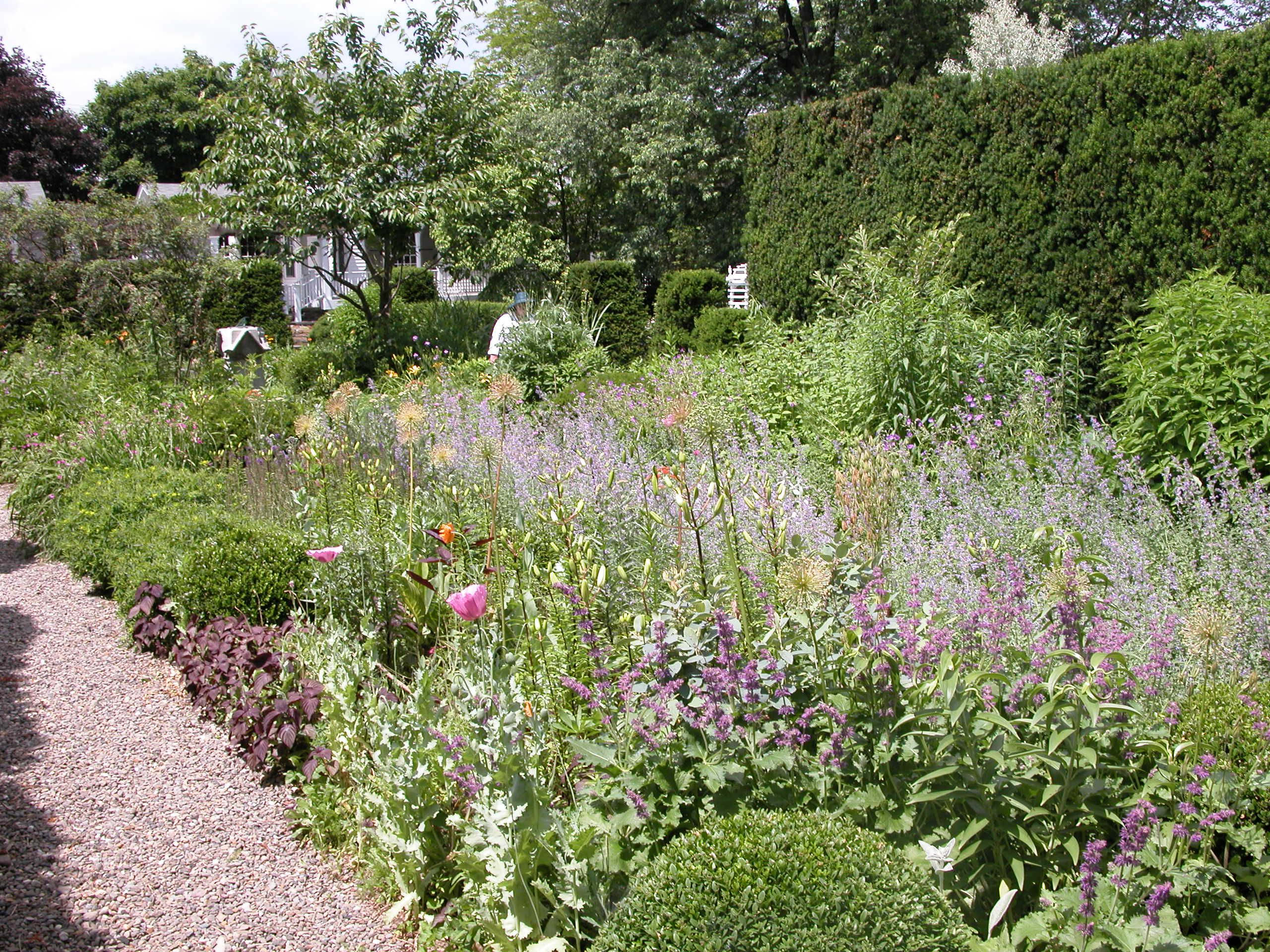 A garden with a cottage border