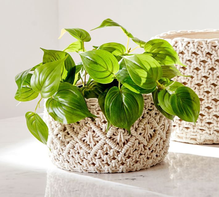 Pottery Barn Faux Potted Pothos Houseplant