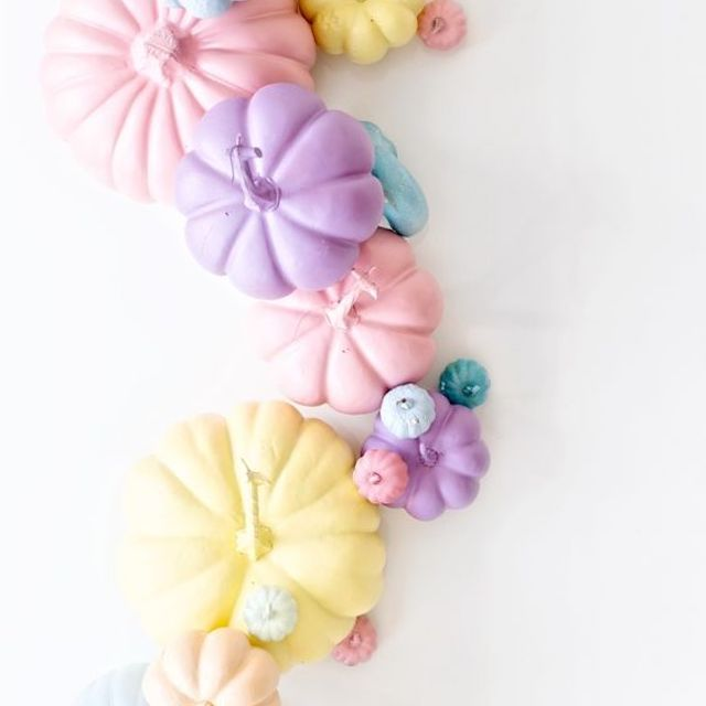 Pastel-colored pumpkins on white background