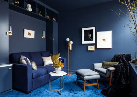Monochromatic Simple Small Living Room In Blue