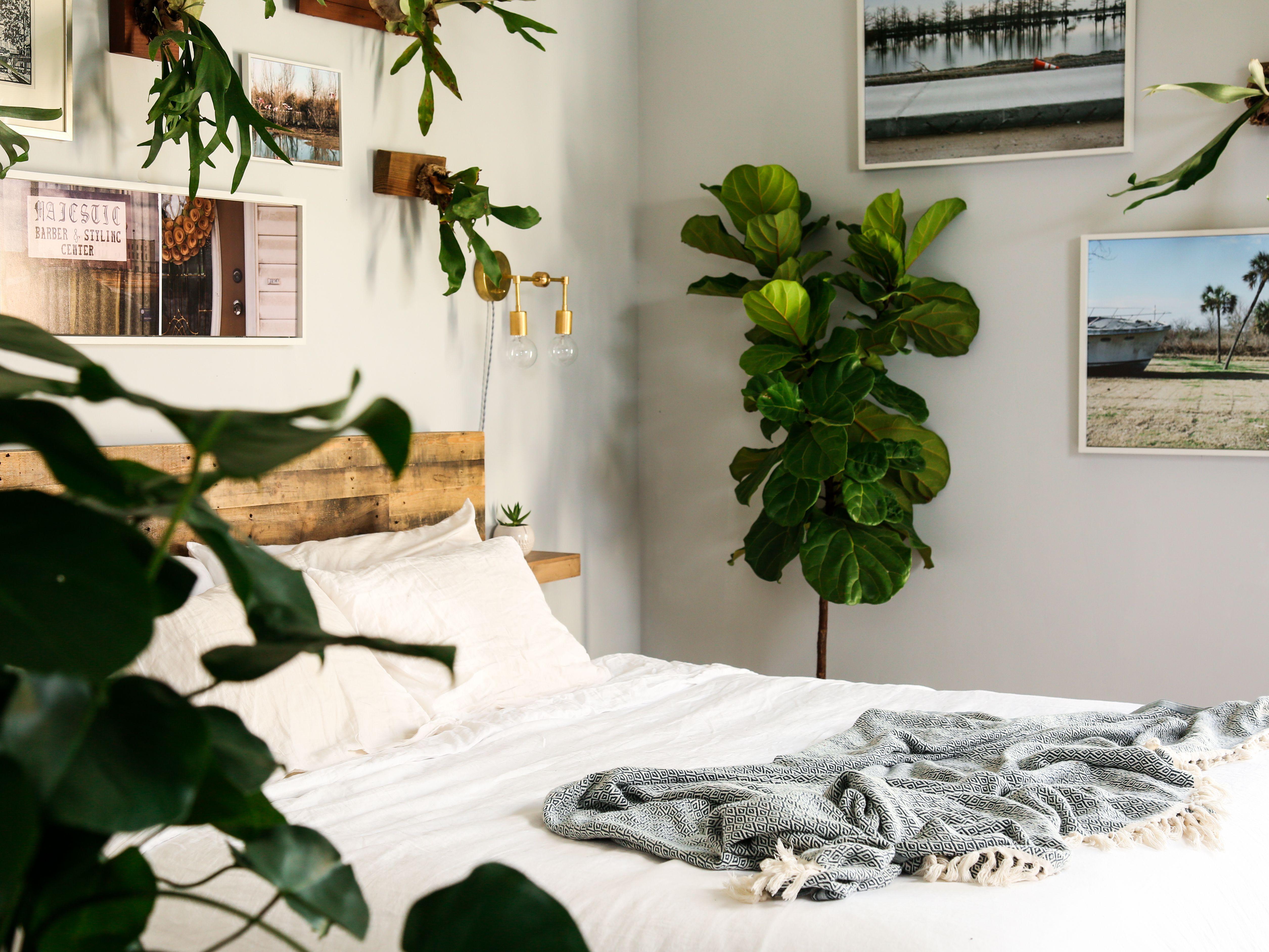 habitación neutral con plantas