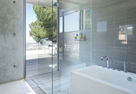 Shower And Bath In Modern Bathroom