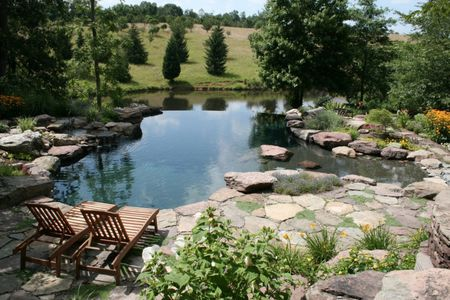 Natural Pool Designs
