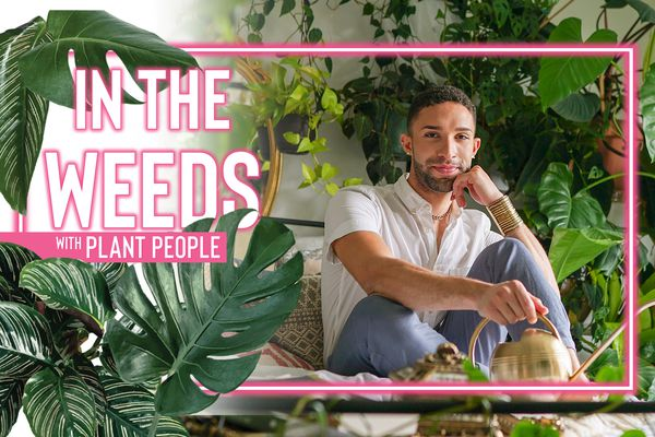 in the weeds ep14