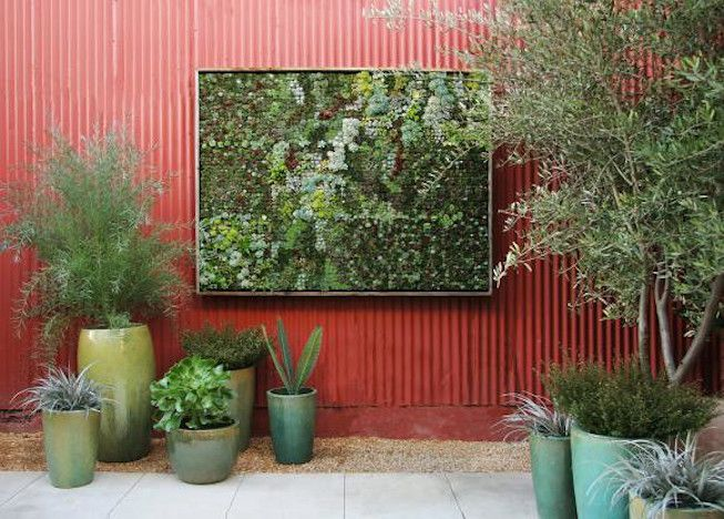 Red corrugated metal wall with plants in green ceramic planters and framed living moss sculpture