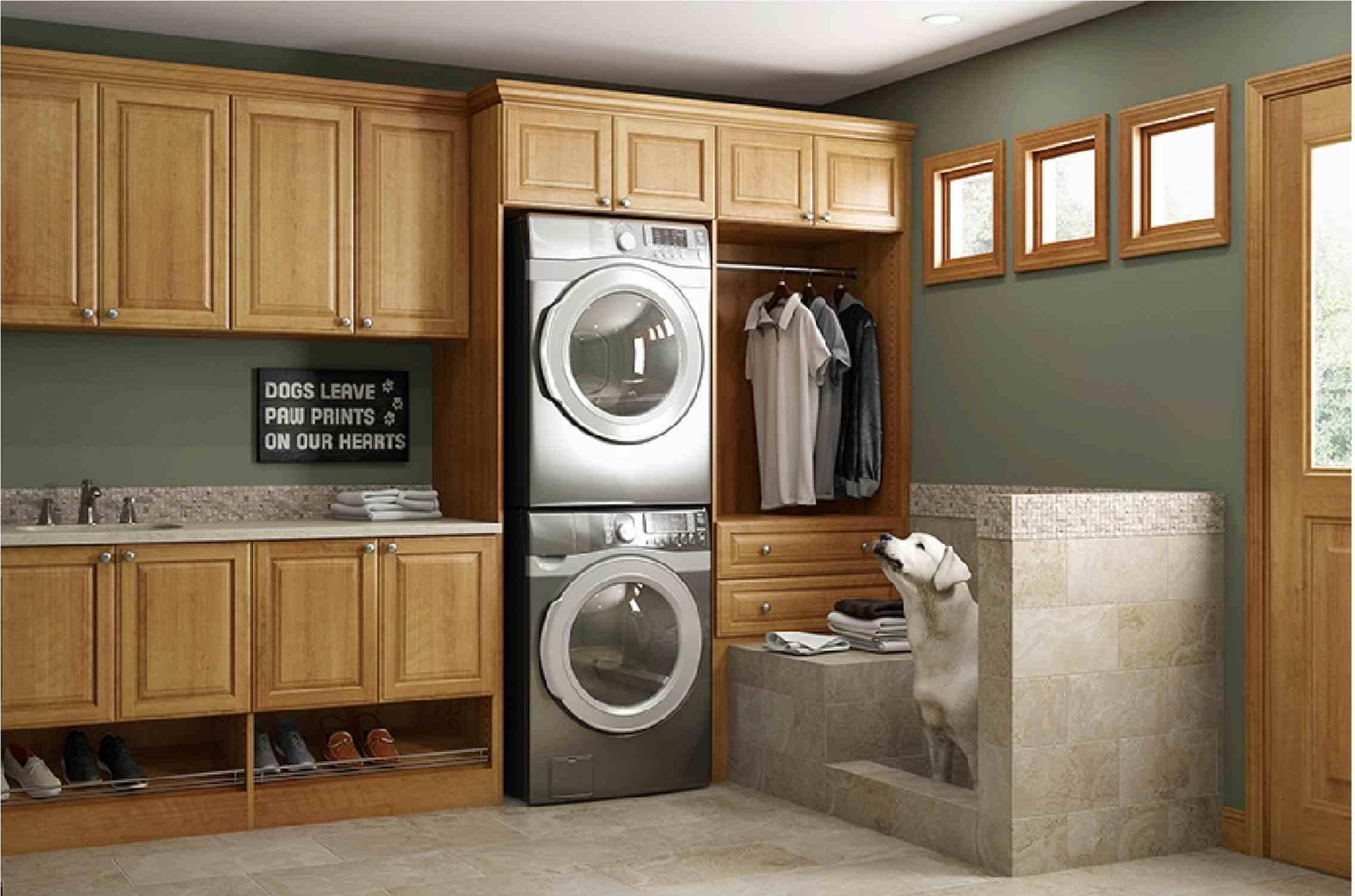 Dog Care Laundry