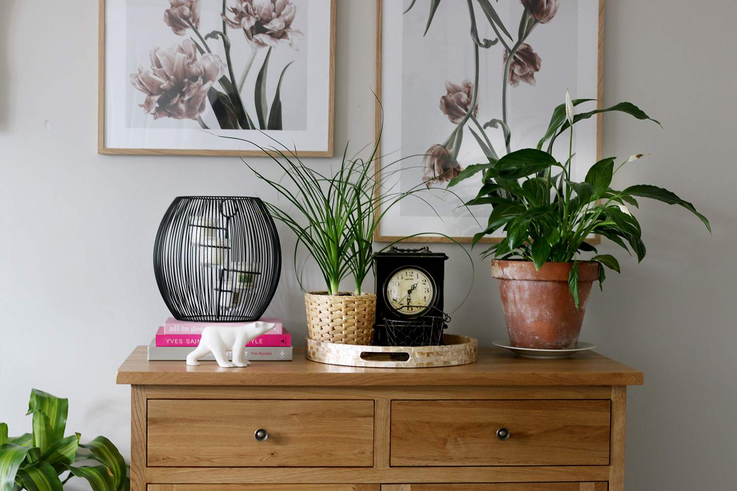 console adorned with plants