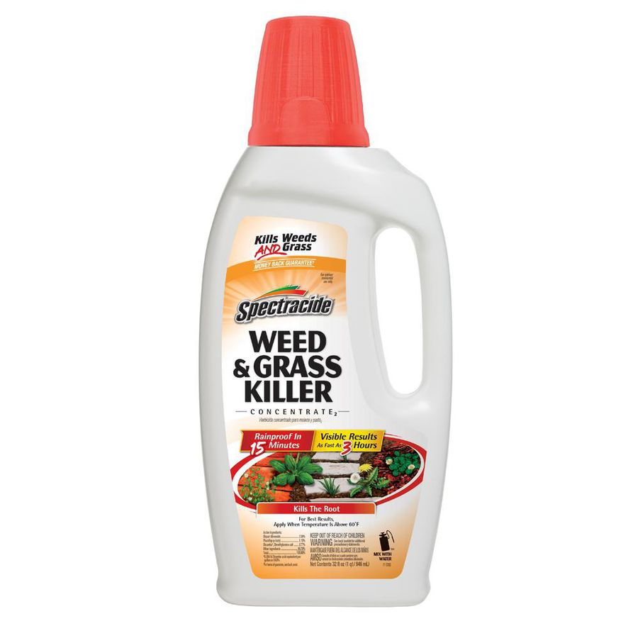 The Only Guide to How To Kill Weeds You're Going To Need
