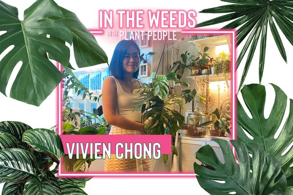 Viven Chong poses for In the Weeds With Plant People