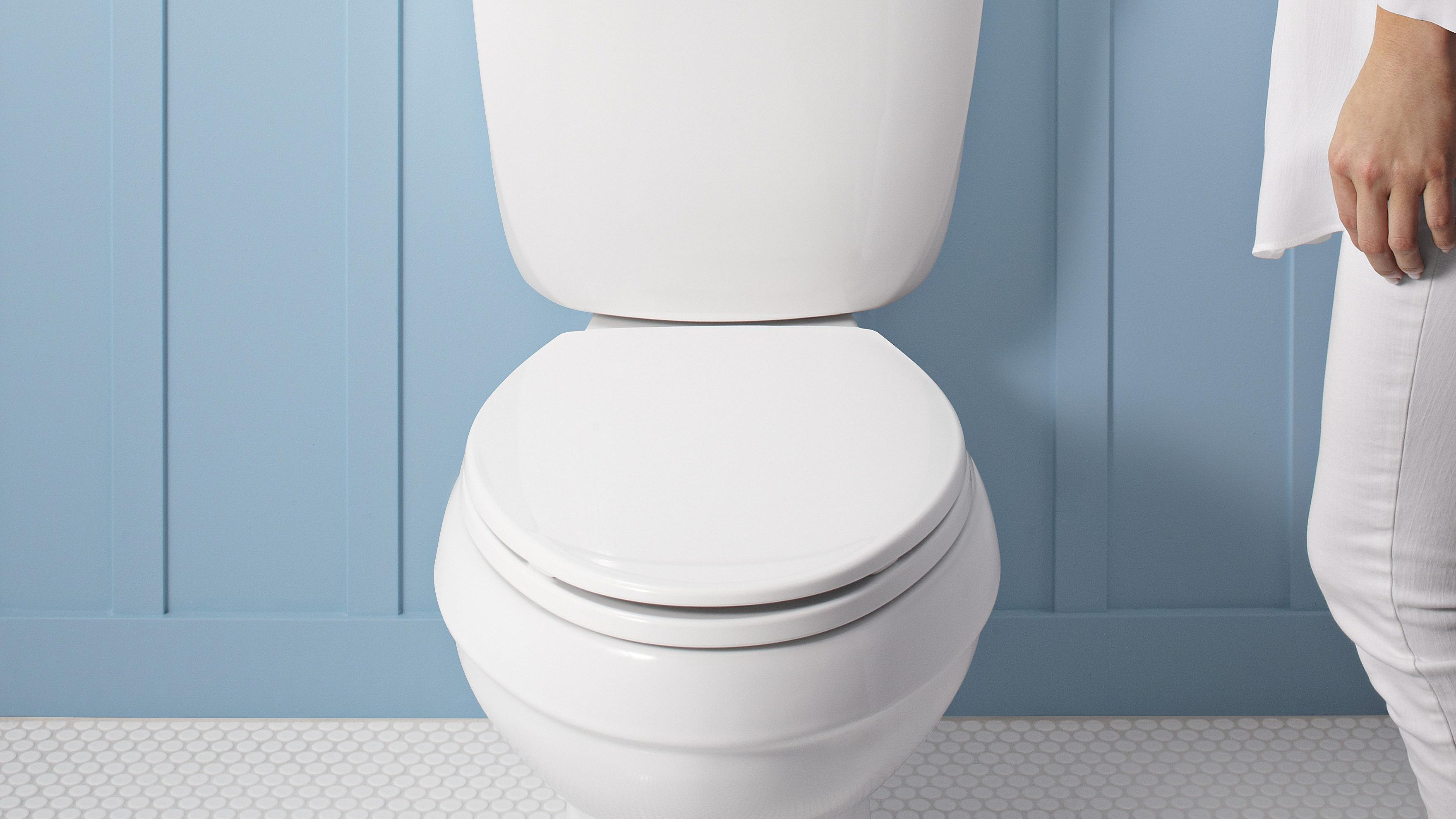 Super What You Should Consider Before Buying A Toilet Creativecarmelina Interior Chair Design Creativecarmelinacom