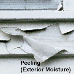 10 Common Exterior Paint Problems And How To Fix Them