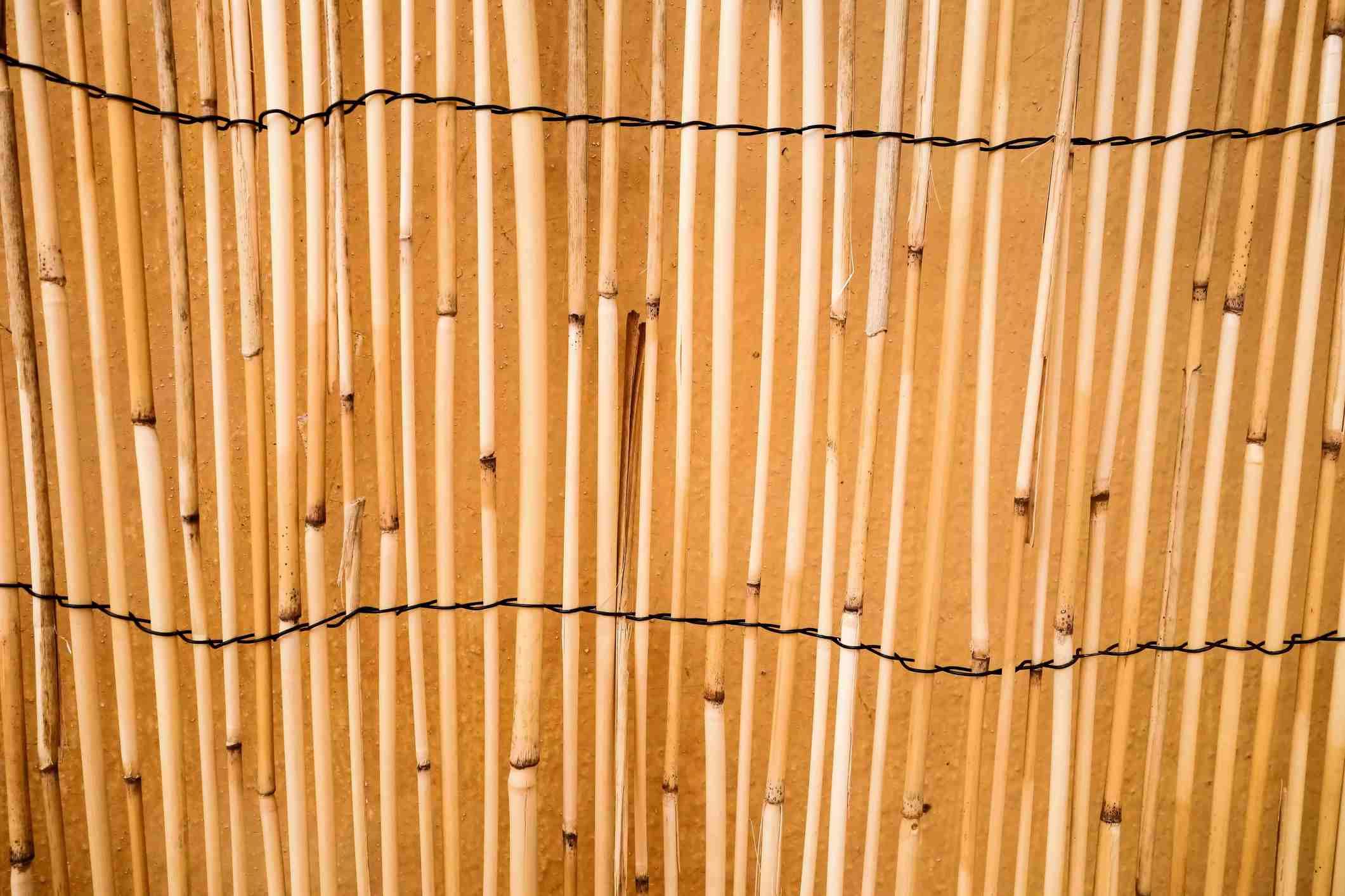 Cerca de caña de bambú