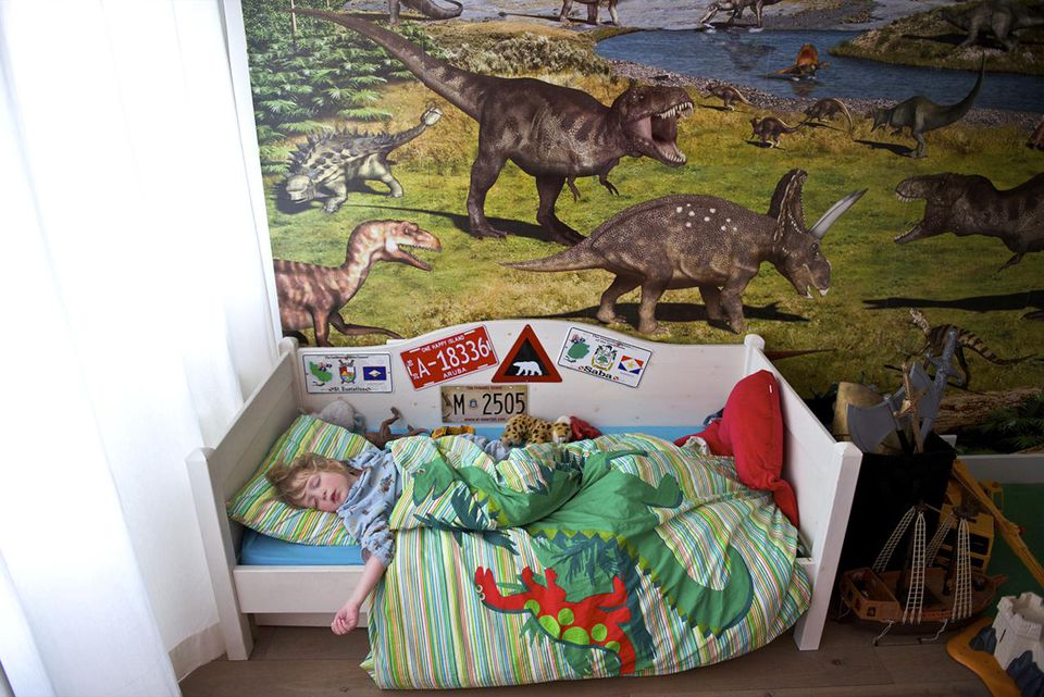 Boy sleeping in a bedroom with Dino wallpaper, three year old toddler