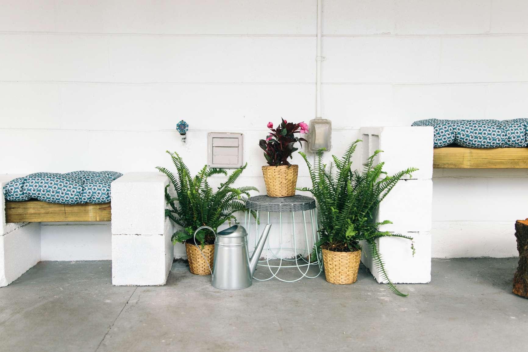 Plantas y bancos en macetas