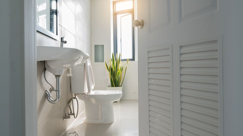 White bathroom door that overlooks the sink and toilet lit by the window.