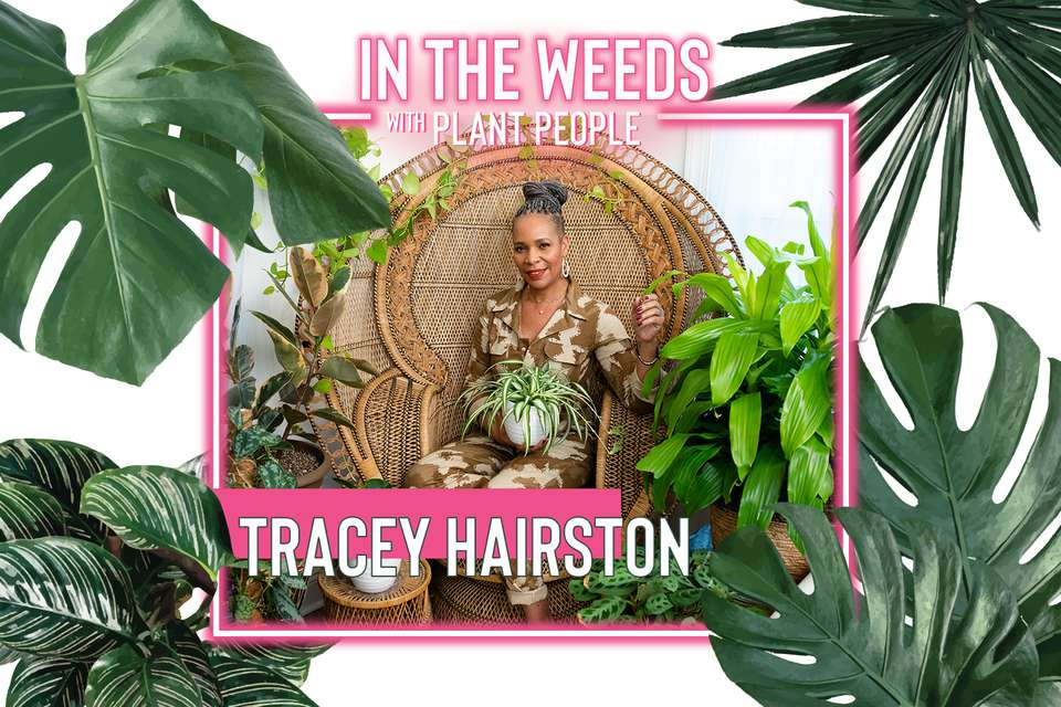 Tracey Hairston for 'In the Weeds With Plant People'