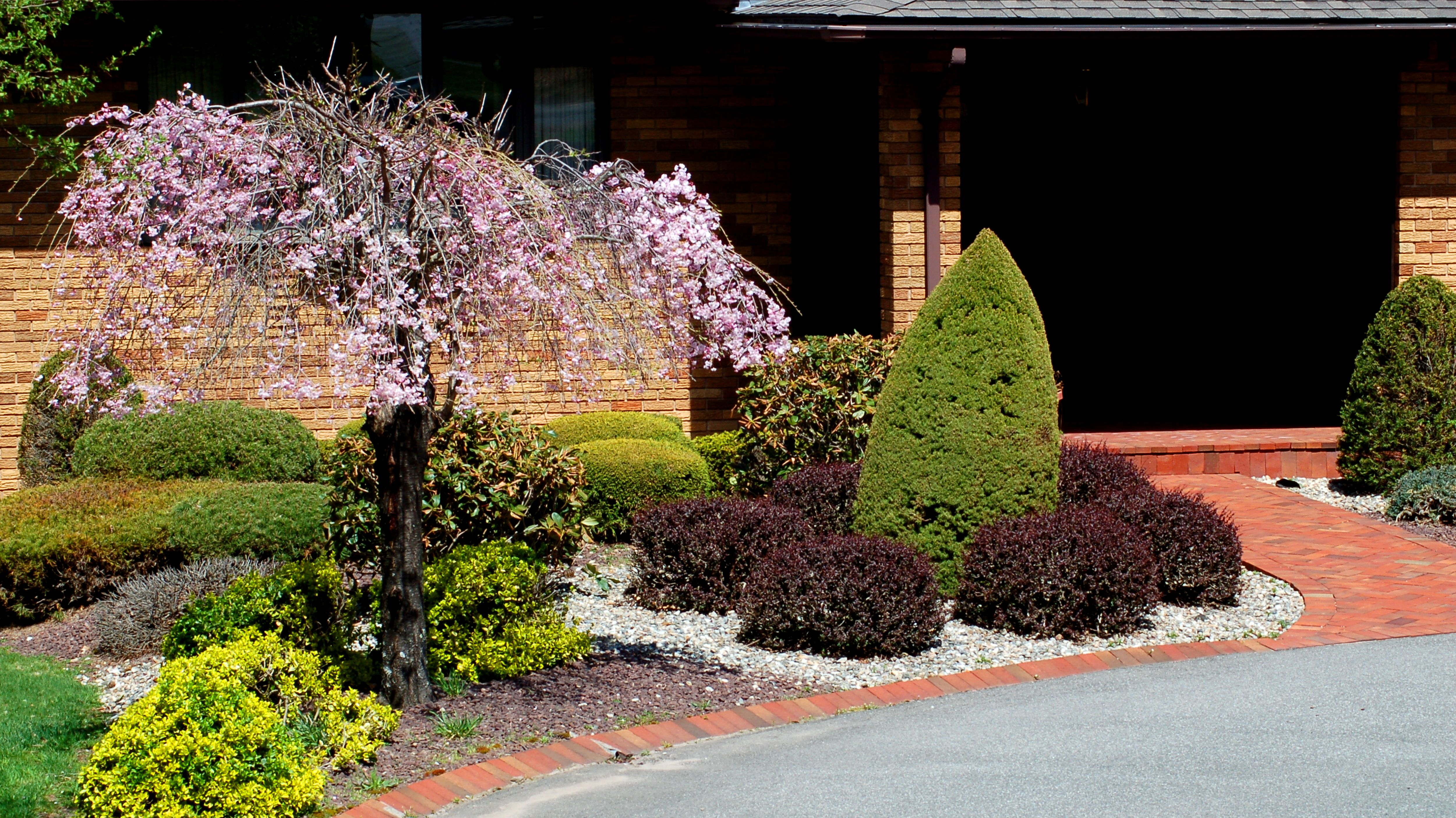 Everything You Need To Know About Aesthetics In Landscaping